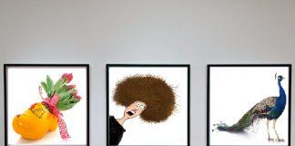 Como Montar Uma Galeria de Arte
