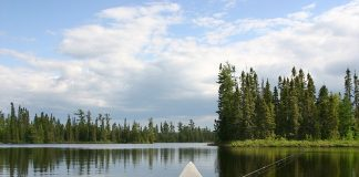 Como Abrir Uma Empresa de Pesca e Camping