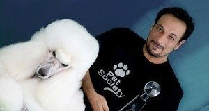 Clínica de Estética Para Animais – Ideia Criativa Para Ganhar Dinheiro