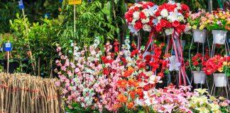 Loja de Plantas e Flores Artificiais