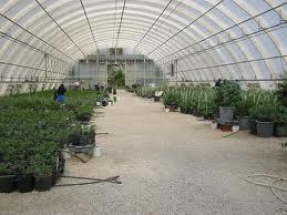 Como Abrir Viveiros de Plantas