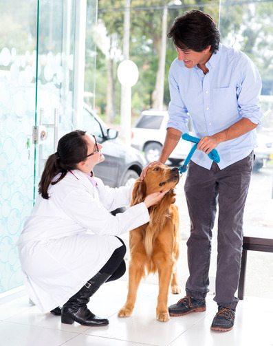 3 Informações Importantes Para Ser um Franqueado Meu Amigo Pet